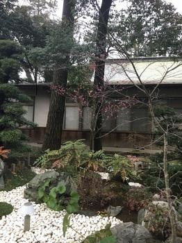 つき神社2.jpg